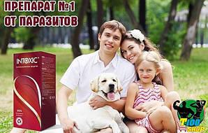 Антипаразитарное средство Intoxic, препарат от паразитов Intoxic, средство от паразитов для людей Интоксик