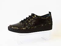 Туфли на шнурке женские Ripka 300