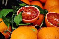 Апельсин Тарокко (Citrus sinensis Tarocco nucellare) Комнатный