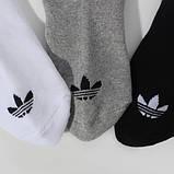 Шкарпетки Adidas Trefoil, Артикул AB3919, р. 39-42, фото 3