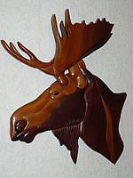 Картина из ценных пород древесины резьба голова лося
