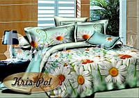 Комплект двуспальный постельного белья из ранфорс маэстро