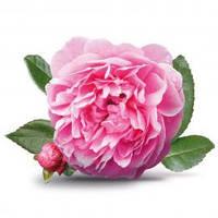 Отдушка Роза Дамаскона, 1 литр