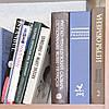 Dictionnaire Français - книга-сейф средняя.