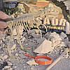 Набор для раскопок динозавра - лучше киндер-сюрприза!