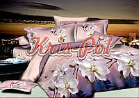 Комплект двуспальный постельного белья из ранфорс баллеро