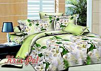 Комплект двуспальный постельного белья из ранфорс грин