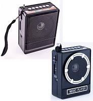 Радиоприемник +USB входы NNS-018/017