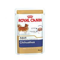 Royal Canin (Роял Канин) CHIHUAHUA ADULT (паштет) вес 85 гр  12шт