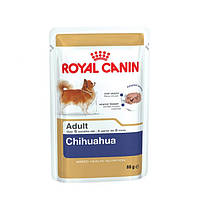 Royal Canin (Роял Канин) Chihuahua Adult (паштет) 85 гр х 12шт
