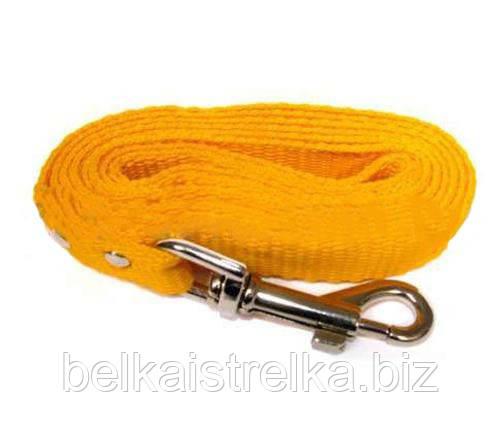 Поводок Кристель нейлоновый 20мм/3м желтый КР2062-01