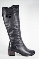Сапоги зимние женские Polann на маленьком каблуке