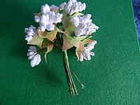 Тычинки с листочками белые