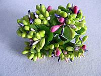 Соцветие тычинок