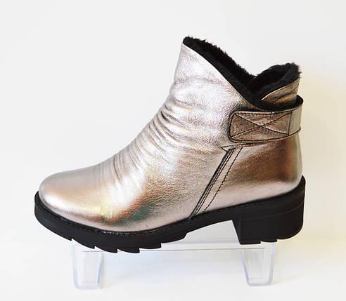 Ботинки зимние серебристые Aquamarin 408, фото 2
