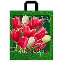 Тюльпаны 40х43 см