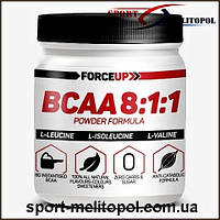 ForceUP BCAA 8:1:1 500г