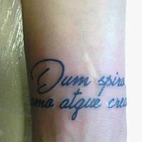 Тату -надписи на латыни (3)