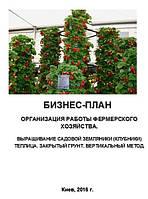 Бизнес – план (ТЭО). Выращивание клубники. Садовая земляника. Теплица. Закрытый грунт. Вертикальный метод