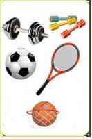 Новое поступление спорттоваров