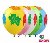 """Латексные воздушные шары с рисунком """"Клен цветной"""", диаметр 12 дюмов (30 см.), шелкография 5 сторон, 100 штук"""