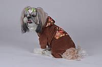 Костюм Pet Fashion Шайн М  для собак