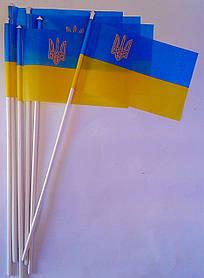 Флаг Украины демонстрационный Украина