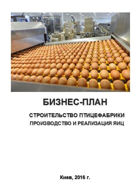Бизнес план производство куриного яйца идеи бизнеса аутсорсинг