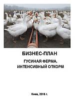 Бизнес-план (ТЭО). Гусиная ферма. Производство гусиного мяса. Мясные субпродукты. Интенсивная технология