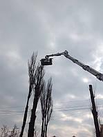 Спиливание деревьев (044)232-28-07
