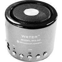 Bluetooth ( блютуз ) колонка портативная WSTER WS-Q9 с MP3, USB и FM-pадио, фото 1