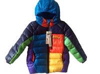 Детская осеняя куртка на мальчика оптом