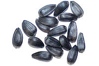 Sunflower seeds (confection), Sunflower kernel (confection). for export from Ukraine