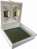 Инкубатор бытовой Квочка ми-30-1-с, фото 5