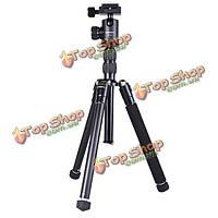 Cambofoto M255 + BC30 мини-легкий настольный штатив для цифровой камеры видеокамеры DSLR