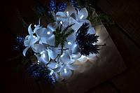 """Гирлянда на батарейках """"30 орхидей"""", фото 1"""
