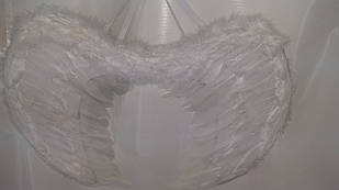 Великі крила янгола з пір'я
