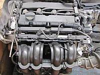 Двигатель Ford Focus II 1.6 LPG, 2009-2011 тип мотора SIDA, фото 1