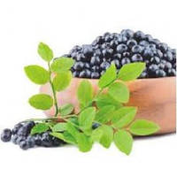 Aronia berry extract – профилактика купероза, 1 литр