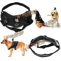 Собаки любимчика выборки грудной ремень ремень ремень для GoPro 4 3 2 3 плюс доставка sj4000