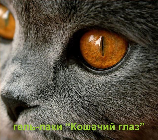 """Магнитные гель-лаки """"Кошачий глаз"""" VIZAVI Professional"""