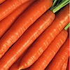 Семена моркови Брилианс F1 100 000 сем.1,4-1,6мм. Нунемс.