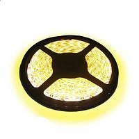 Светодиодная LED лента SMD 5630-60 WW тёплый белый негерметичная IP20