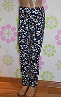 Модные детские лосины №Л-32 (цветные)