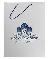 Пакет бумажный с логотипом (195х170х70 мм) №13б