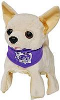 Интерактивная Собачка Chi Chi Love Флиппи 5897257 (589 7257)