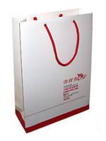 Пакет бумажный с логотипом (370х250х80 мм) №6