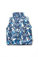 Куртка-жилет 2 в 1 для мальчиков, демисезонная детская жилетка