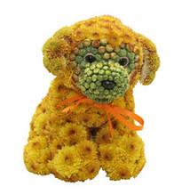 Игрушка из цветов  - собачка