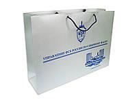 Пакет бумажный с логотипом (670х490х182 мм) №19